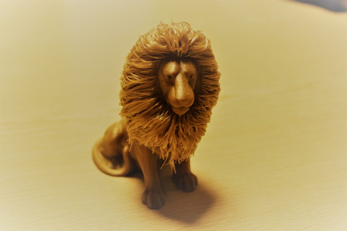 Hairy Lion, Gold